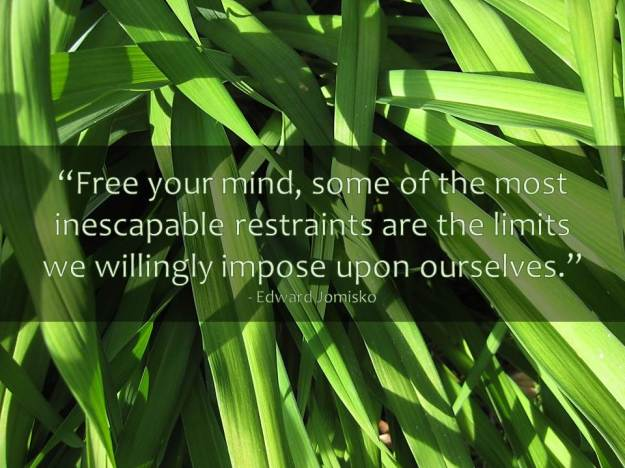 """Free your mind, some of the most inescapable restraints are the limits we willingly impose upon ourselves."" - Edward Jomisko"